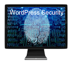 Wordpress security and protection